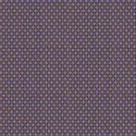 CALYPSO Wild Lilac